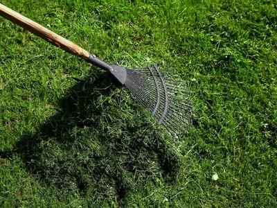 Raking a lawn