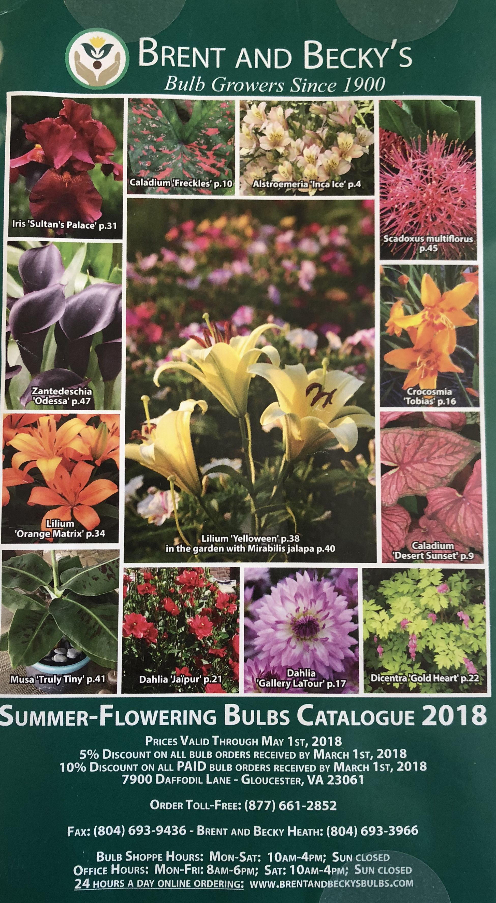 60 Free Seed Catalogs And Plant Catalogs