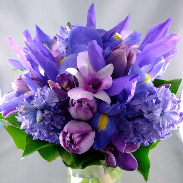 Dutch Iris Bouquet
