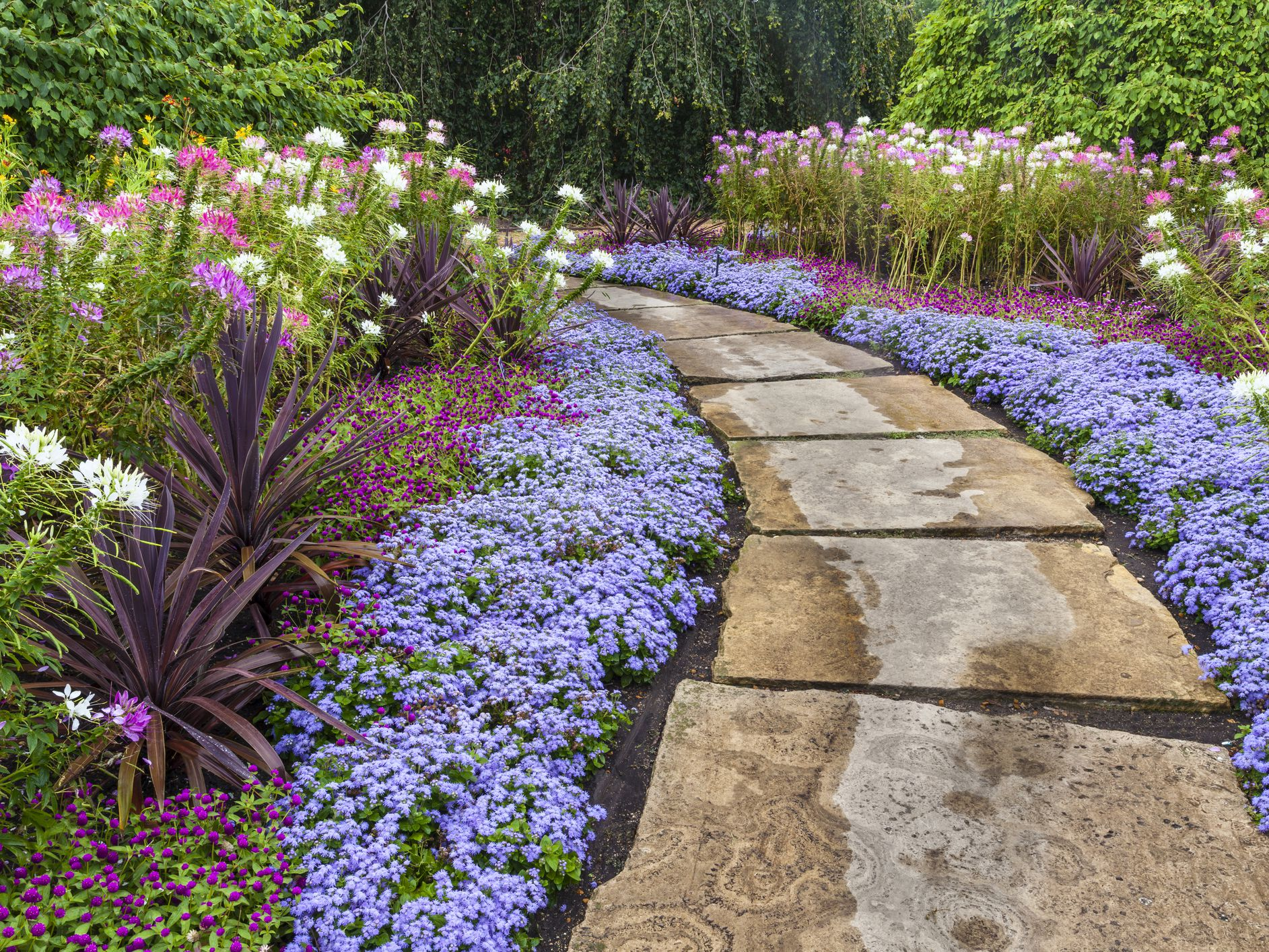 Landscaping On A Budget 5 Easy Money Saving Ideas