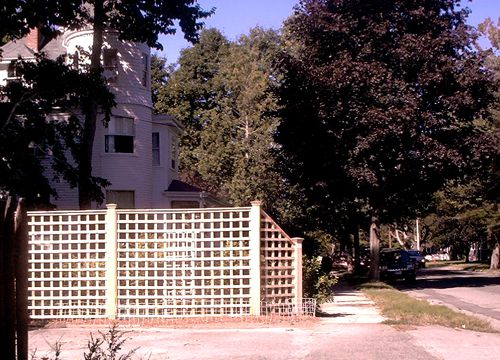 Picture of lattice fence with large openings.