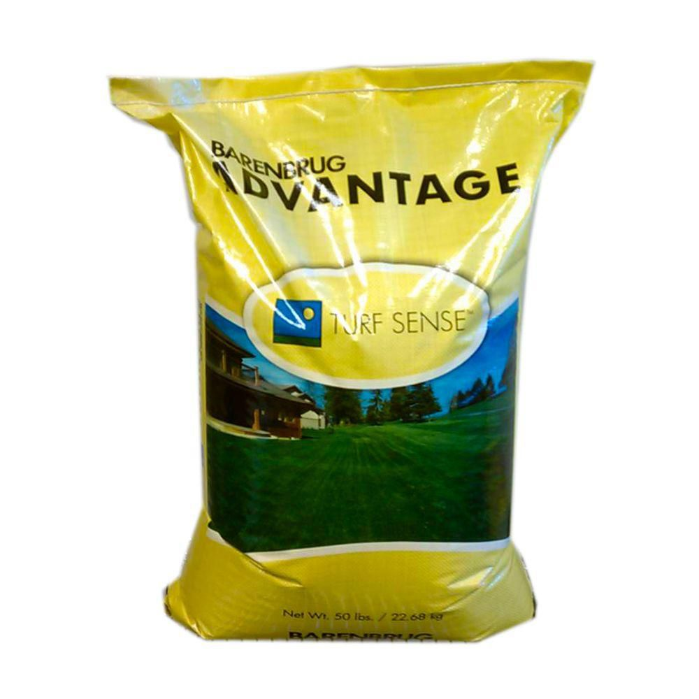 Barenbrug Advantage Pinnacle III Perennial Ryegrass Seed