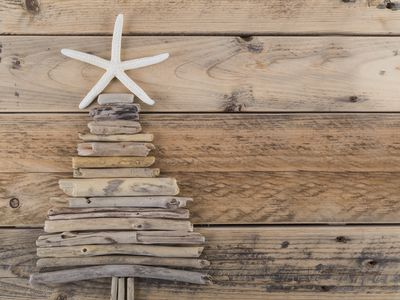 Starfish and driftwood Christmas tree