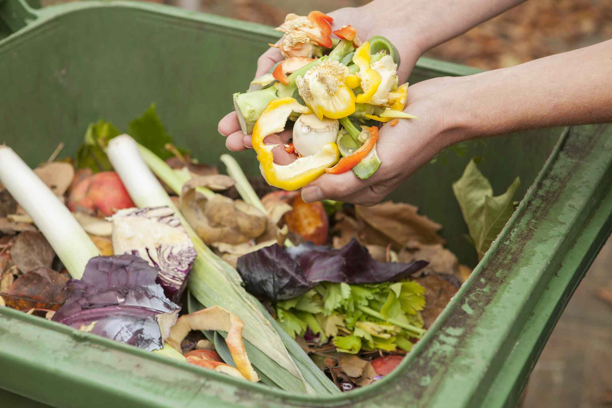 person putting kitchen waste into a compost bin