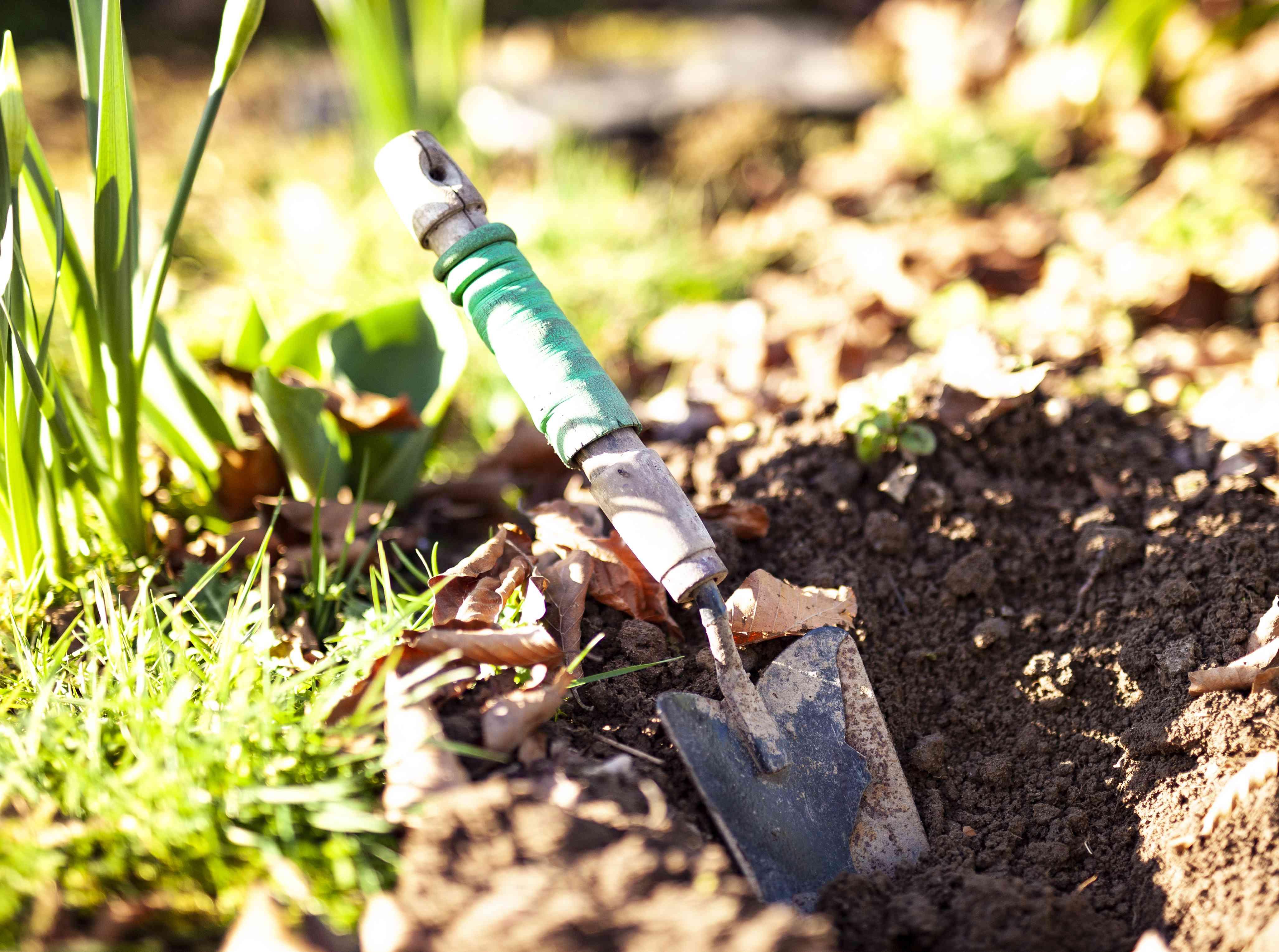 A Small Spade in Soil in a Garden
