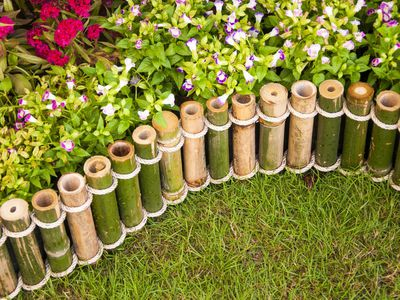 best bamboo cane pole stake all decor ideas for fences.htm 10 diy garden trellises that cost less than  20  10 diy garden trellises that cost less