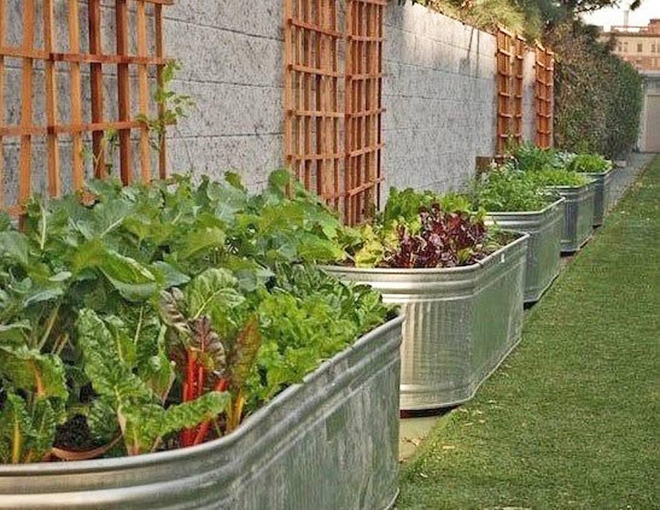 15 Raised Bed Garden Design Ideas on