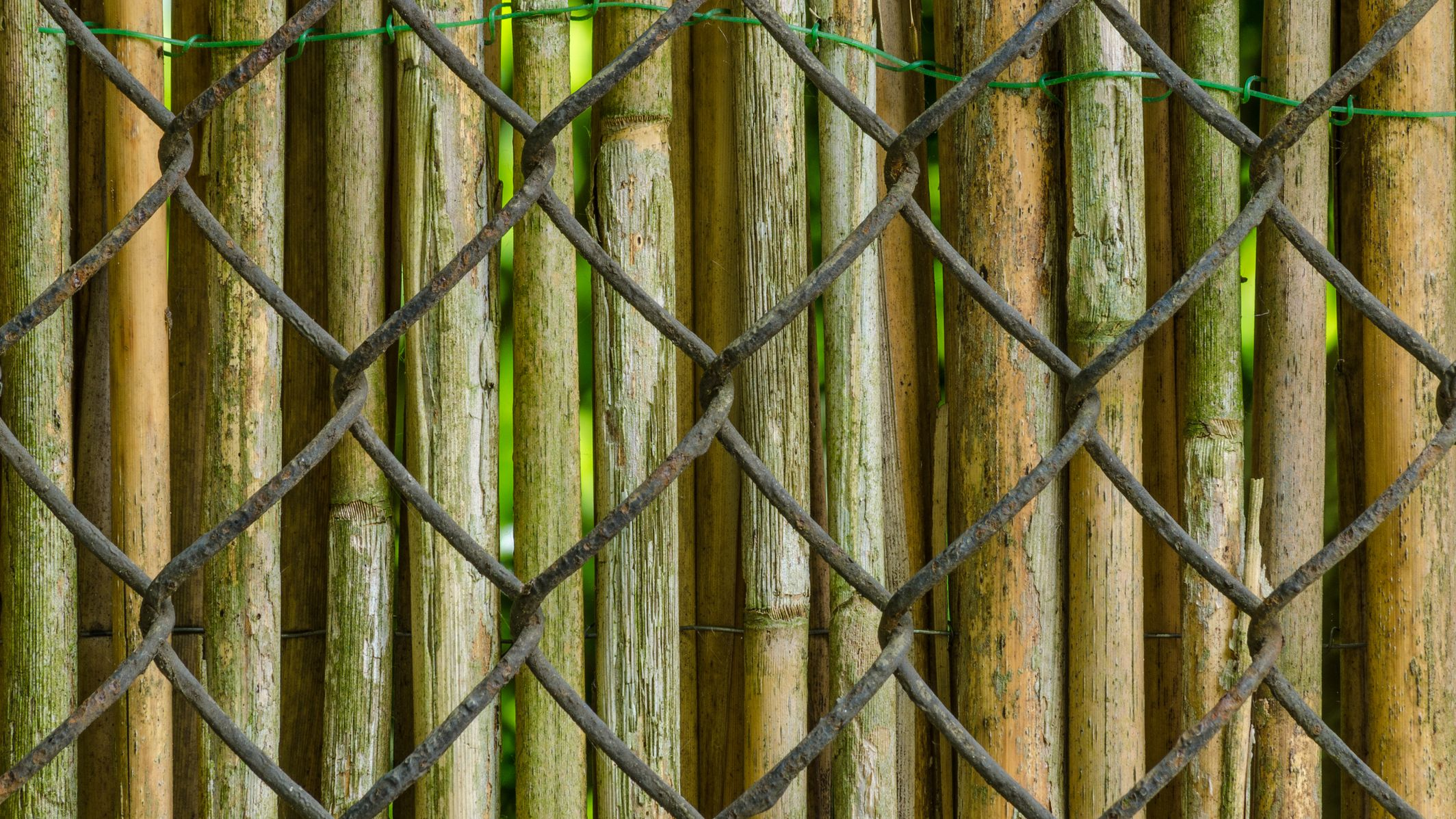 Picture of: How To Cover Up A Chain Link Fence