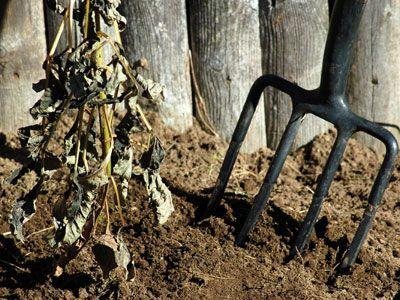 a pitchfork in dirt