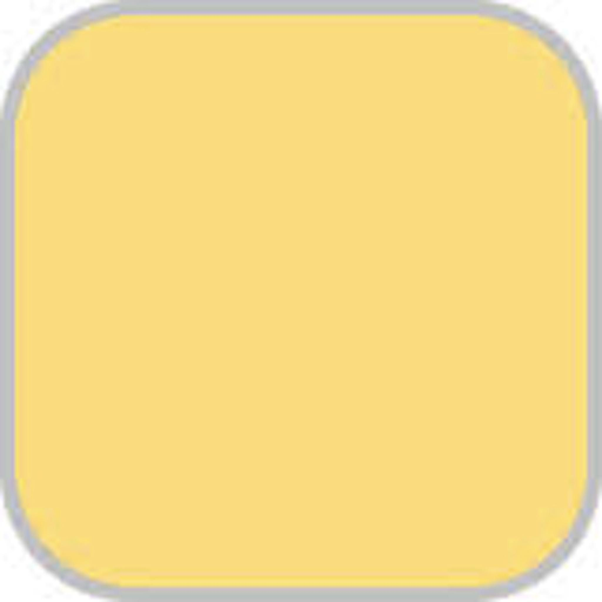 Behr Bicycle Yellow