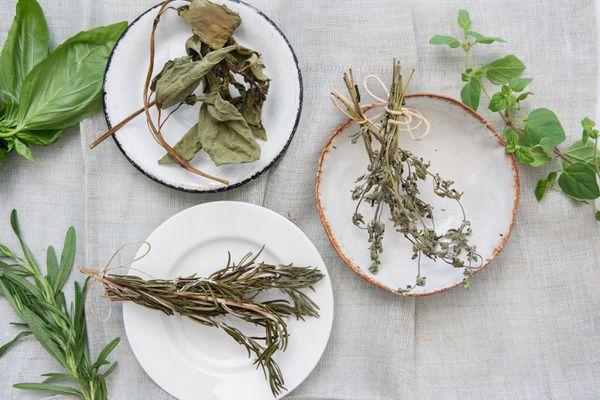 an assortment of dried herbs