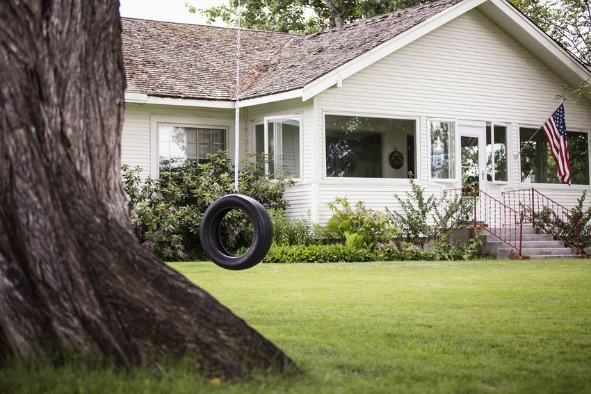 Tire swing hanging in backyard