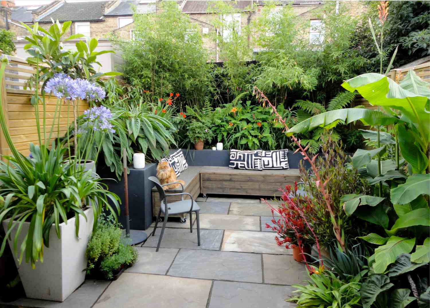 Tropical plants used as a living wall with planters and a couch.