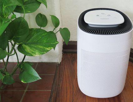 Tenergy Sorbi 1000ml Air Dehumidifier and Air Purifier