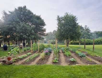 How To Plan A Garden To Feed A Family