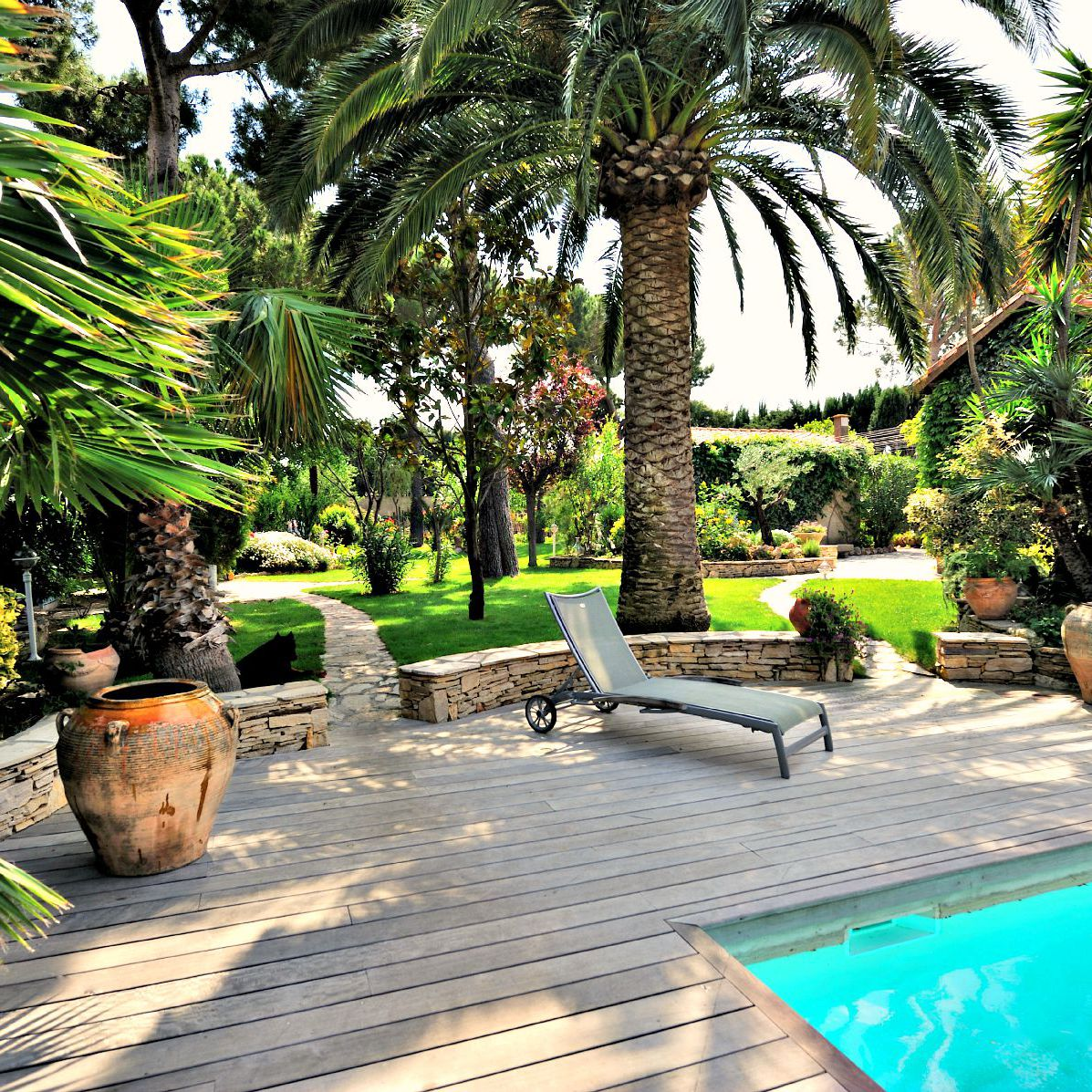 The 9 Best Trees For Landscaping Around Pools