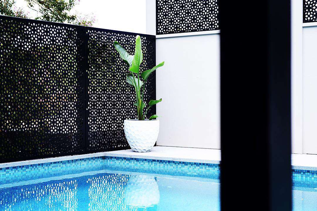 A black laser cut screen surrounding a blue with a potted plant.