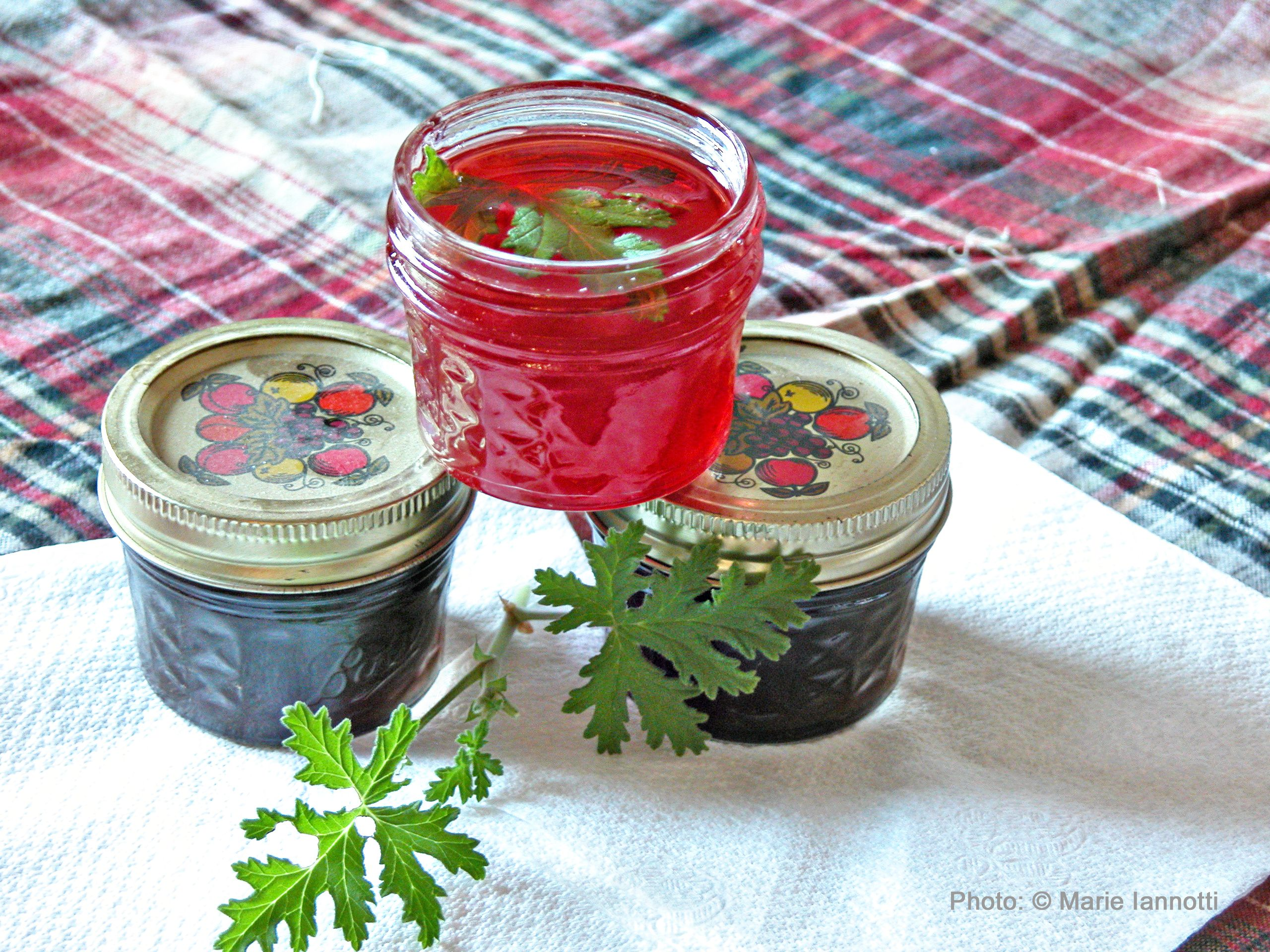 Herbal jellies in an assortment of flavors