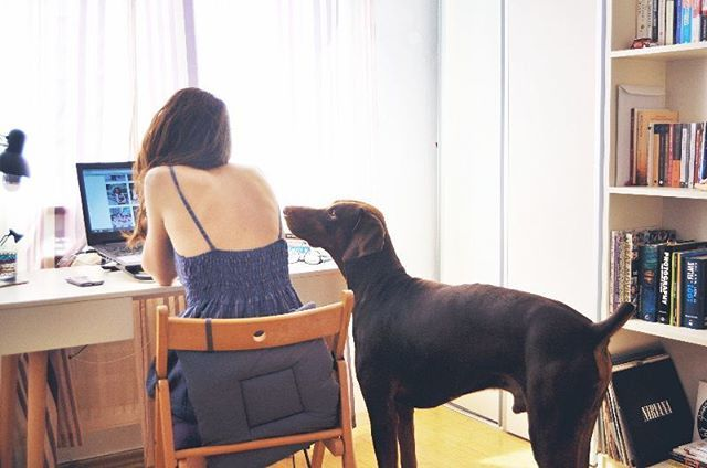 Woman at desk with dog