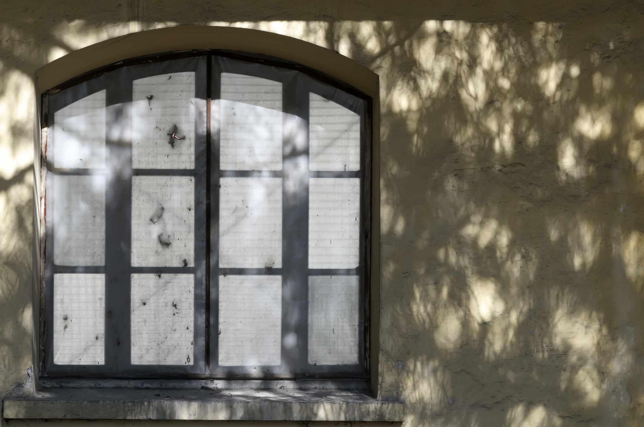 A set of windows on a concrete wall