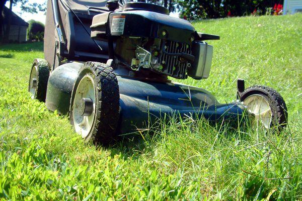 Closeup of lawn mower cutting grass.