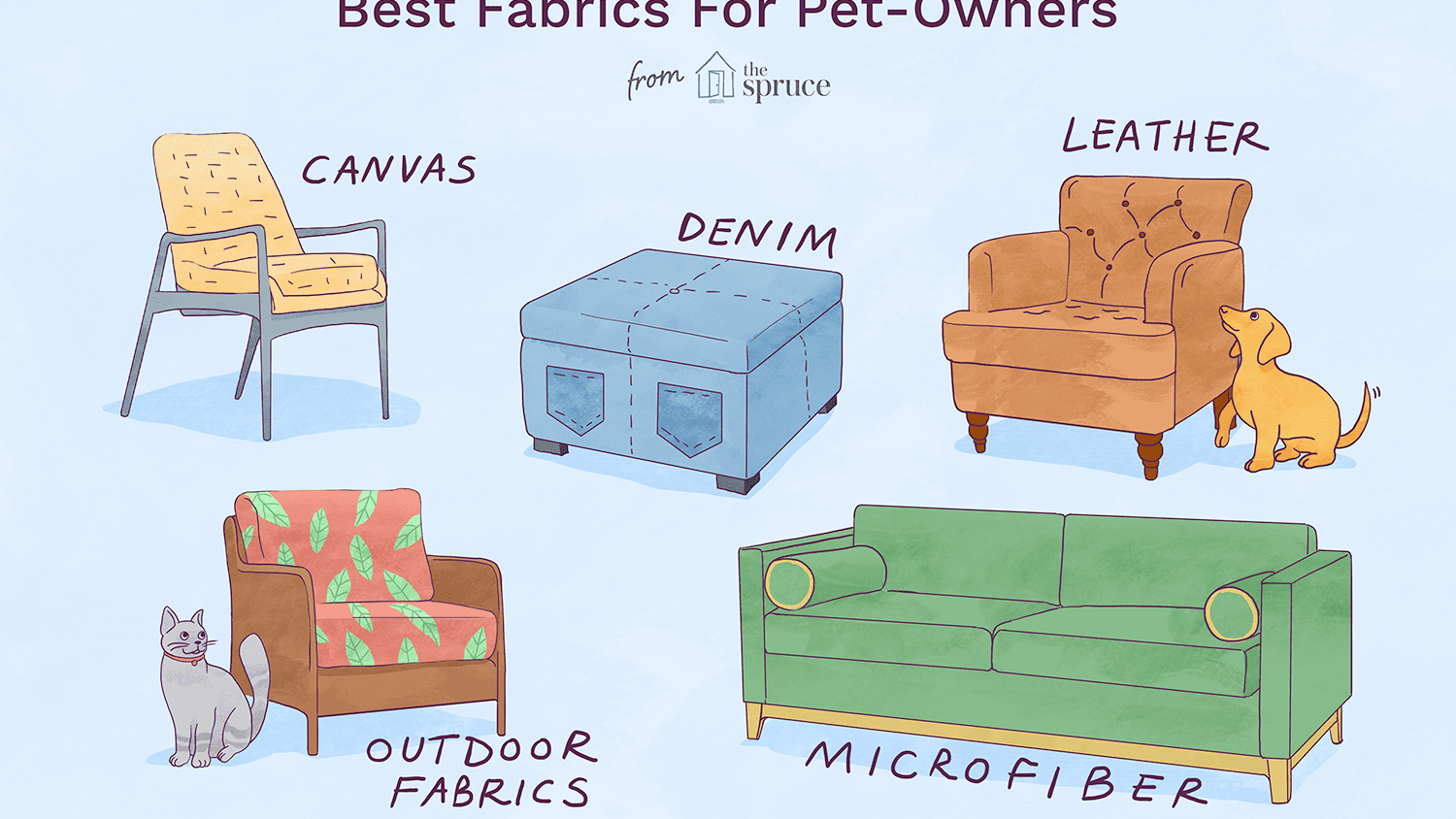 Picture of: 5 Great Pet Friendly Fabrics For Your Home