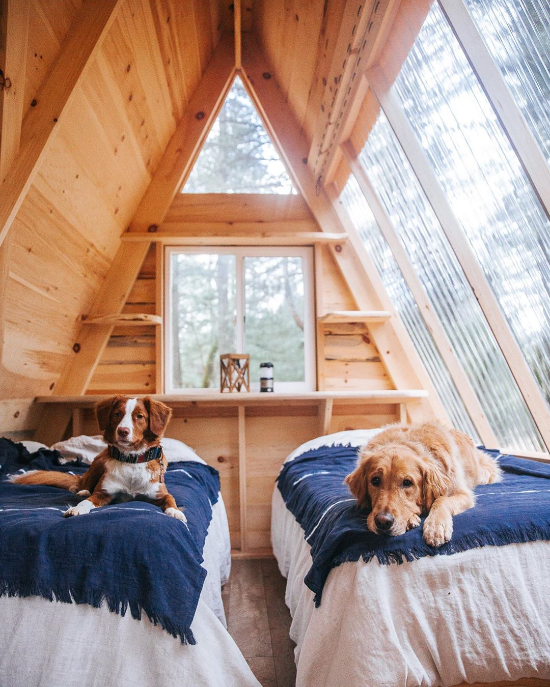 18 Treehouse Interiors You'll Love