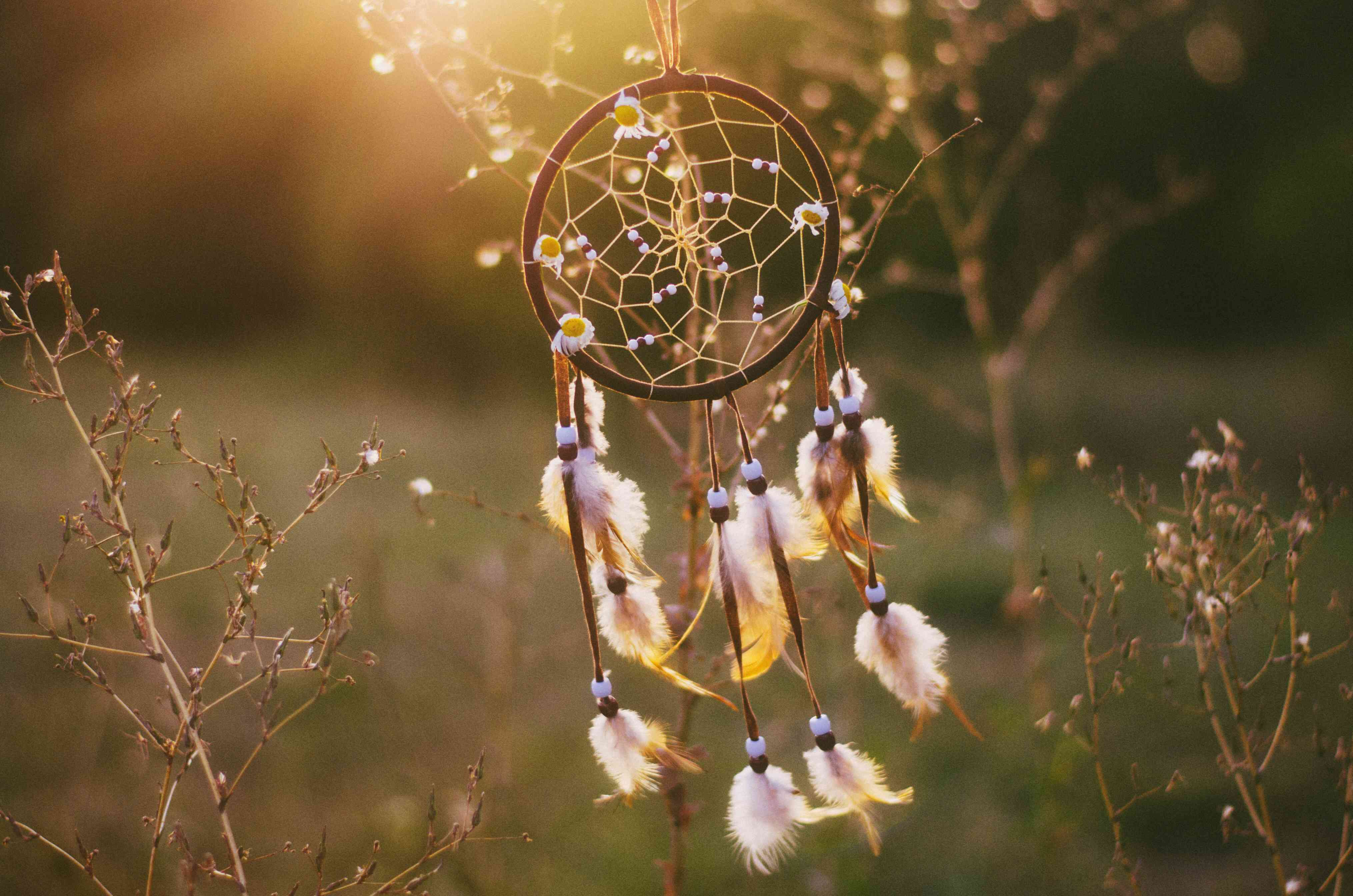 Close-Up Of Dreamcatcher Hanging On Plant