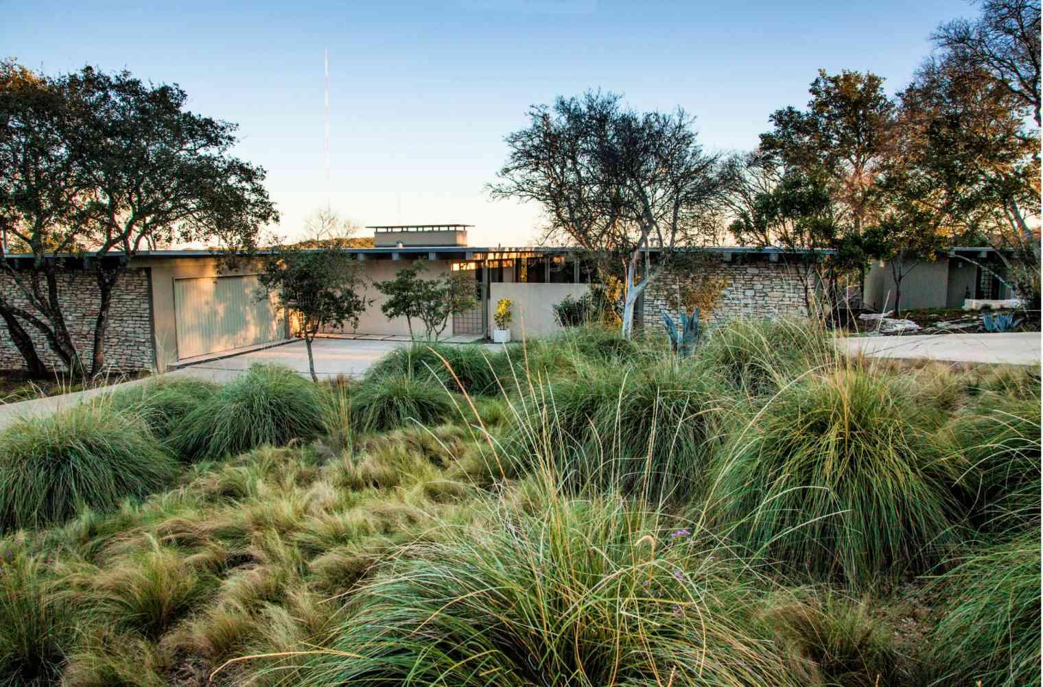 midcentury modern landscape ideas