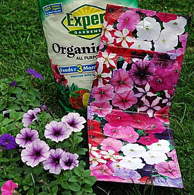 container gardening picture of what you'll need to make a flowering plant bag container garden