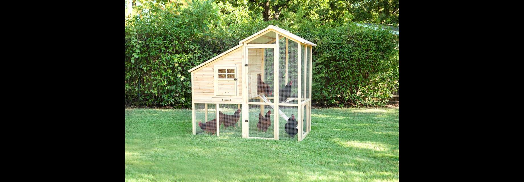 Superior Construction Chicken Coop