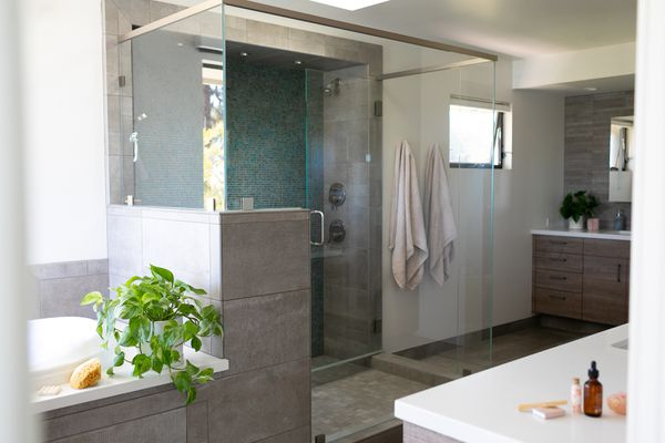 Guest bathroom with glass doors, houseplant near tub and decor items on counters