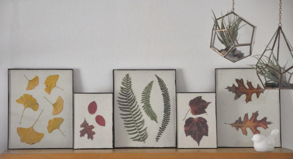 Cómo usar hojas de otoño para un proyecto de arte presionado