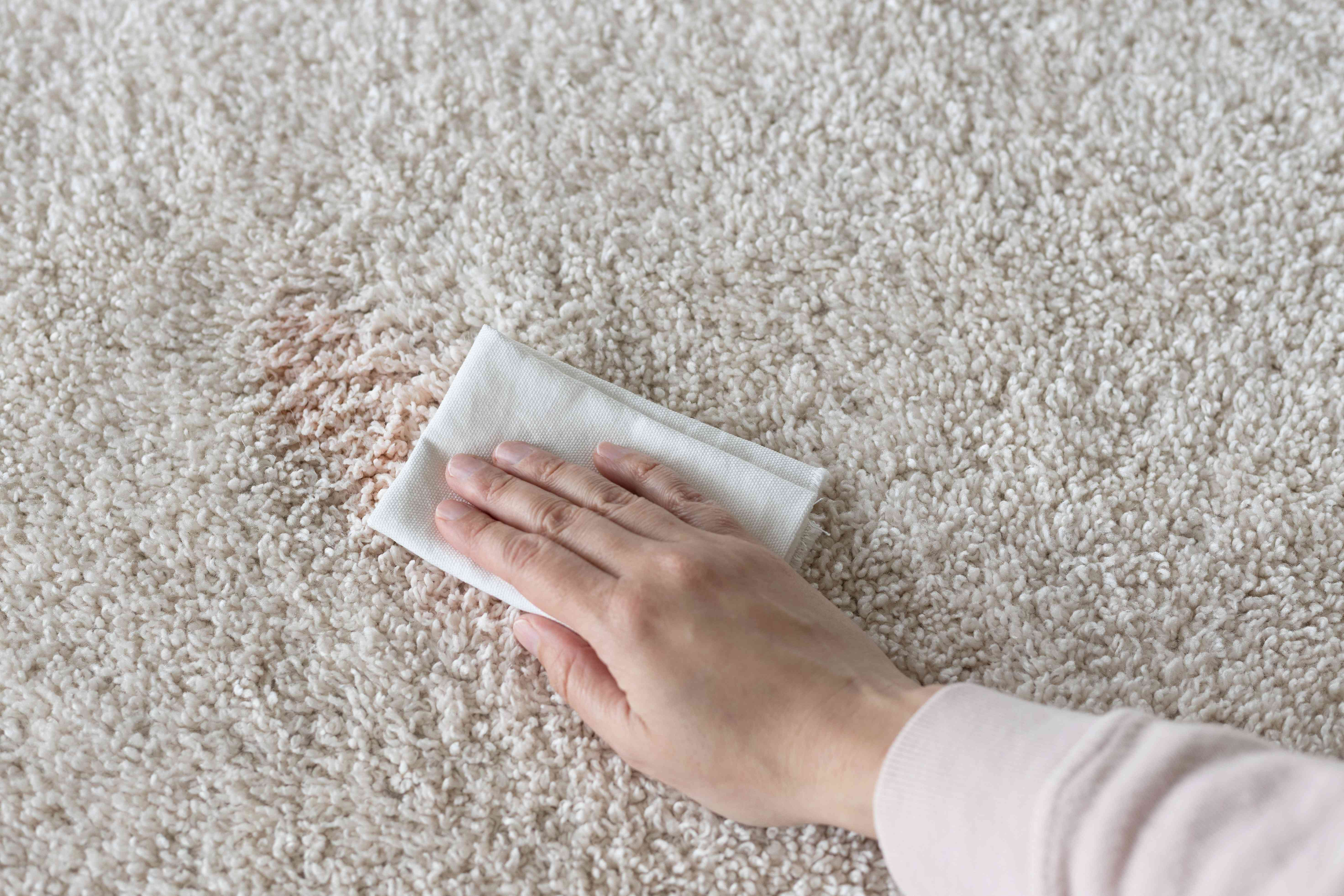 Cream-colored carpet with fruit punch stain blotted with white cloth and cleaning solution