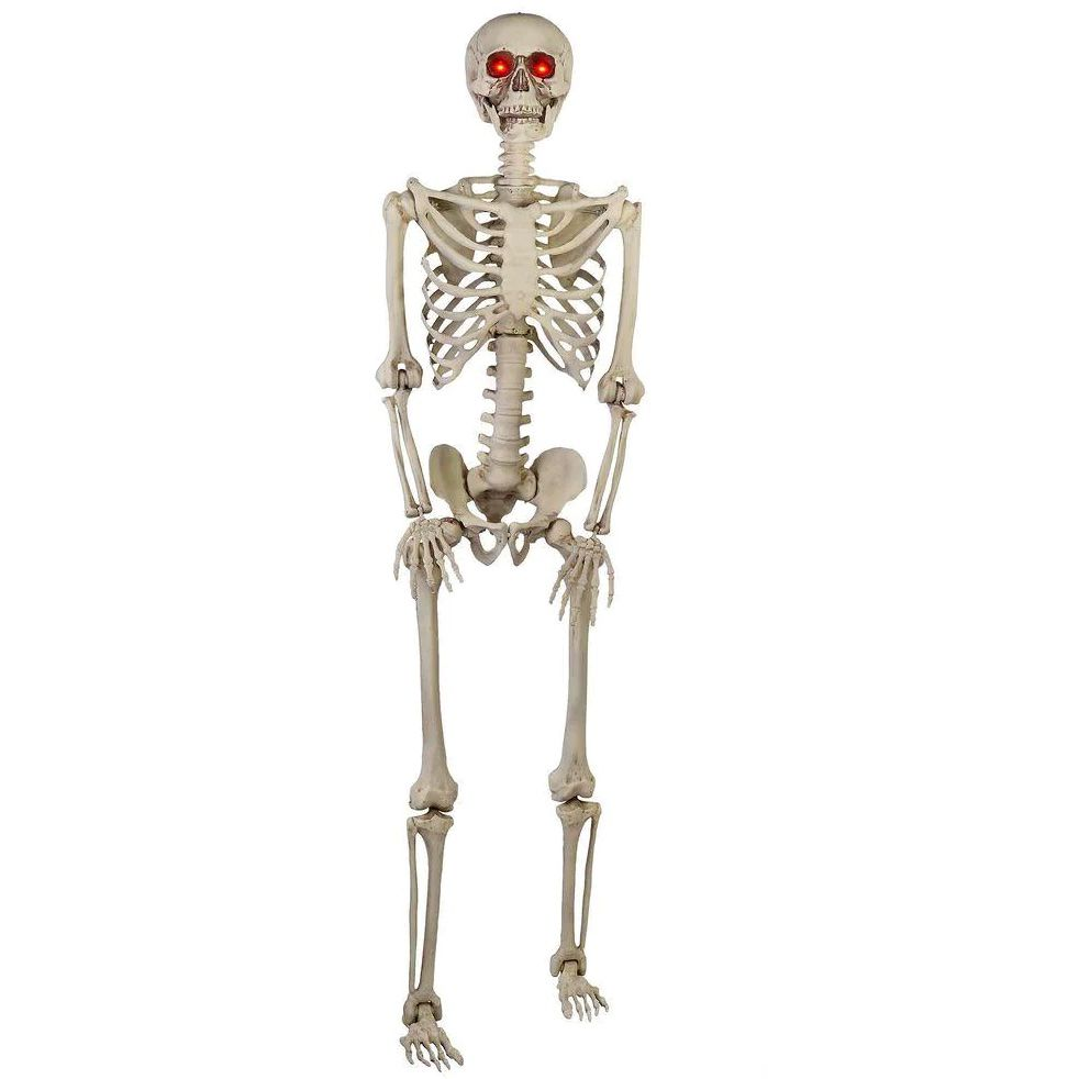 5 ft. Hanging Plastic Posable Skeleton Decoration with LED Eyes