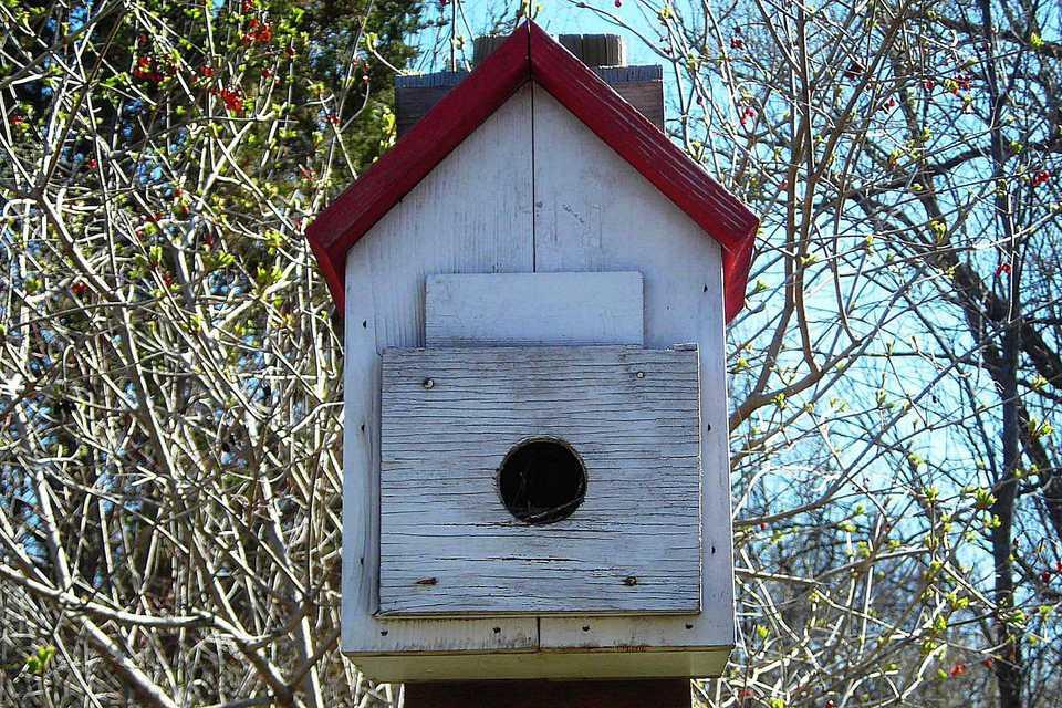 Bird Roost Box
