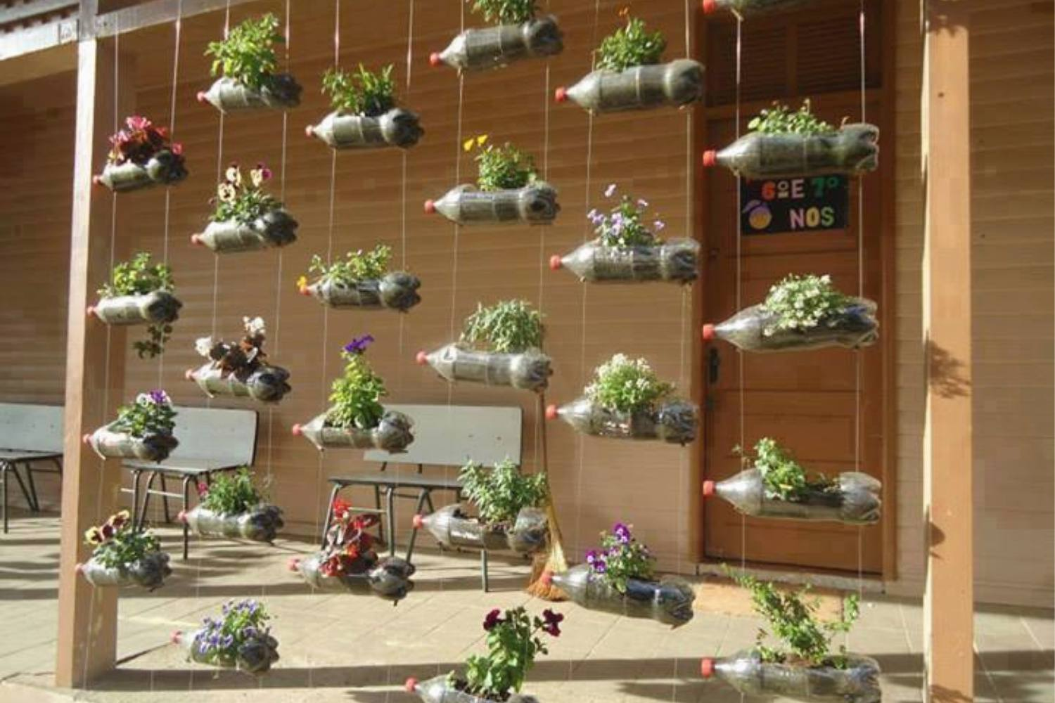 Vertical garden ideas with hanging two-liter bottles filled with plants.