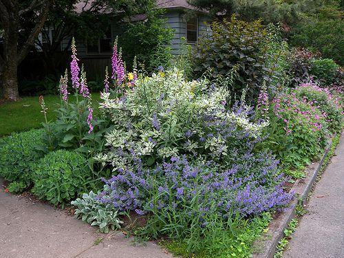 Creative Sidewalk Gardens