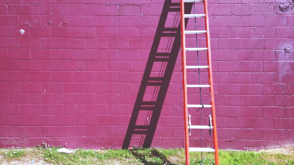 The 7 Best Ladders to Buy in 2018