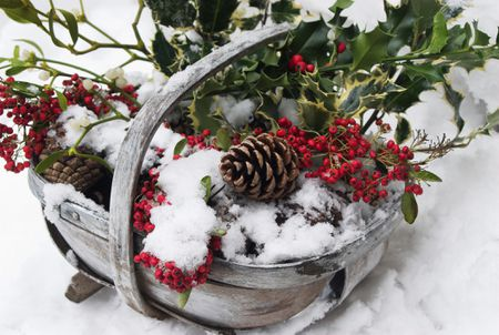 holly in a basket as an outdoor christmas decoration