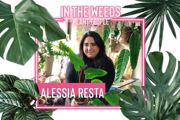 Alessia Resta for In the Weeds With Plant People