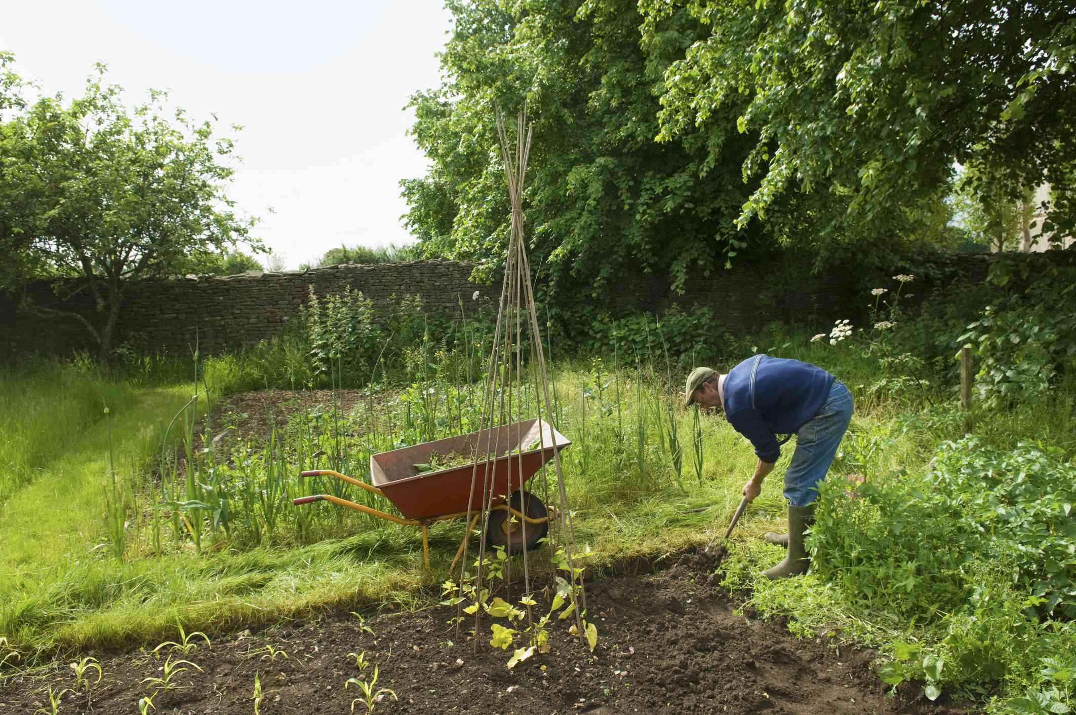 person shoveling garden soil