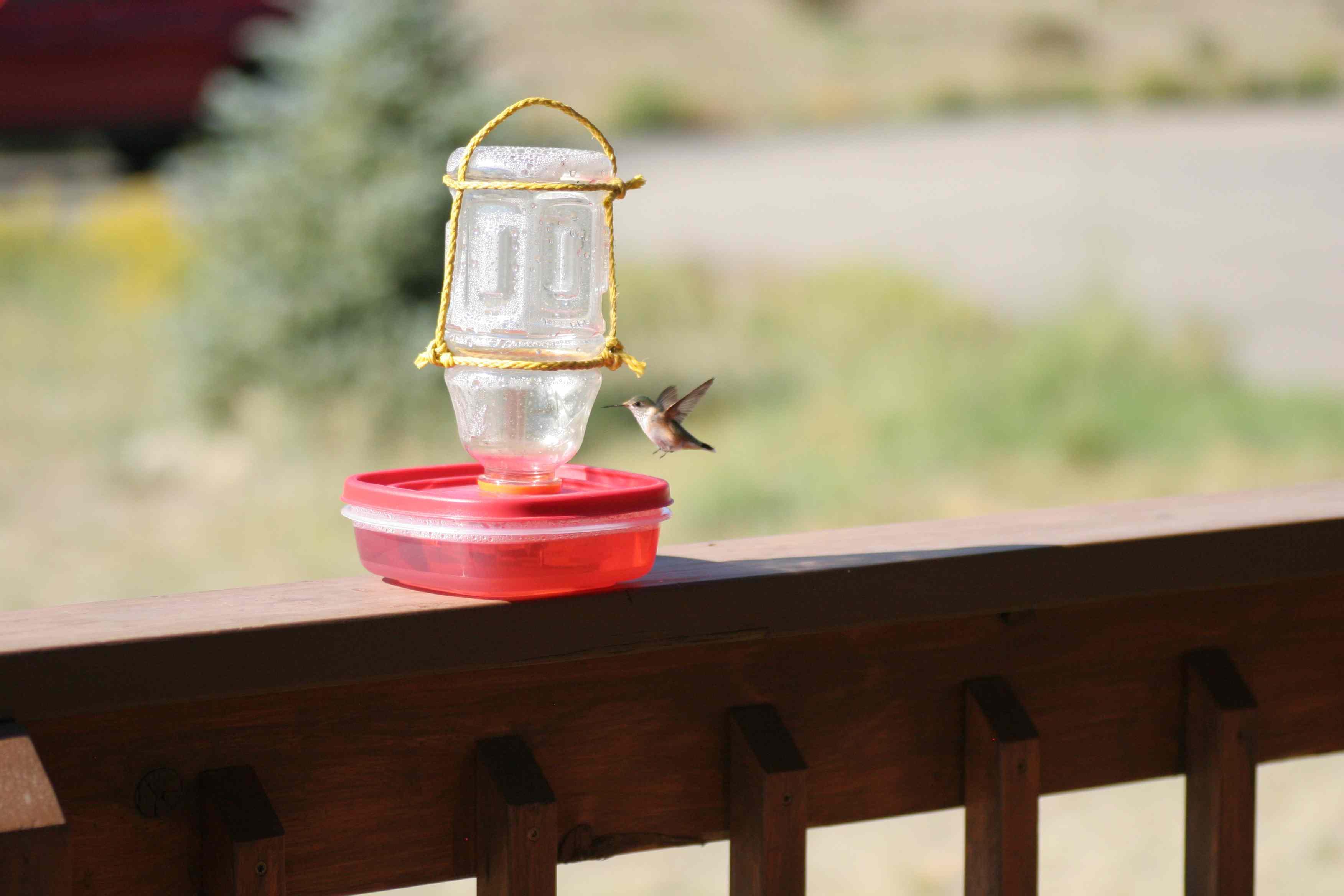 A red hummingbird feeder with a hummingbird