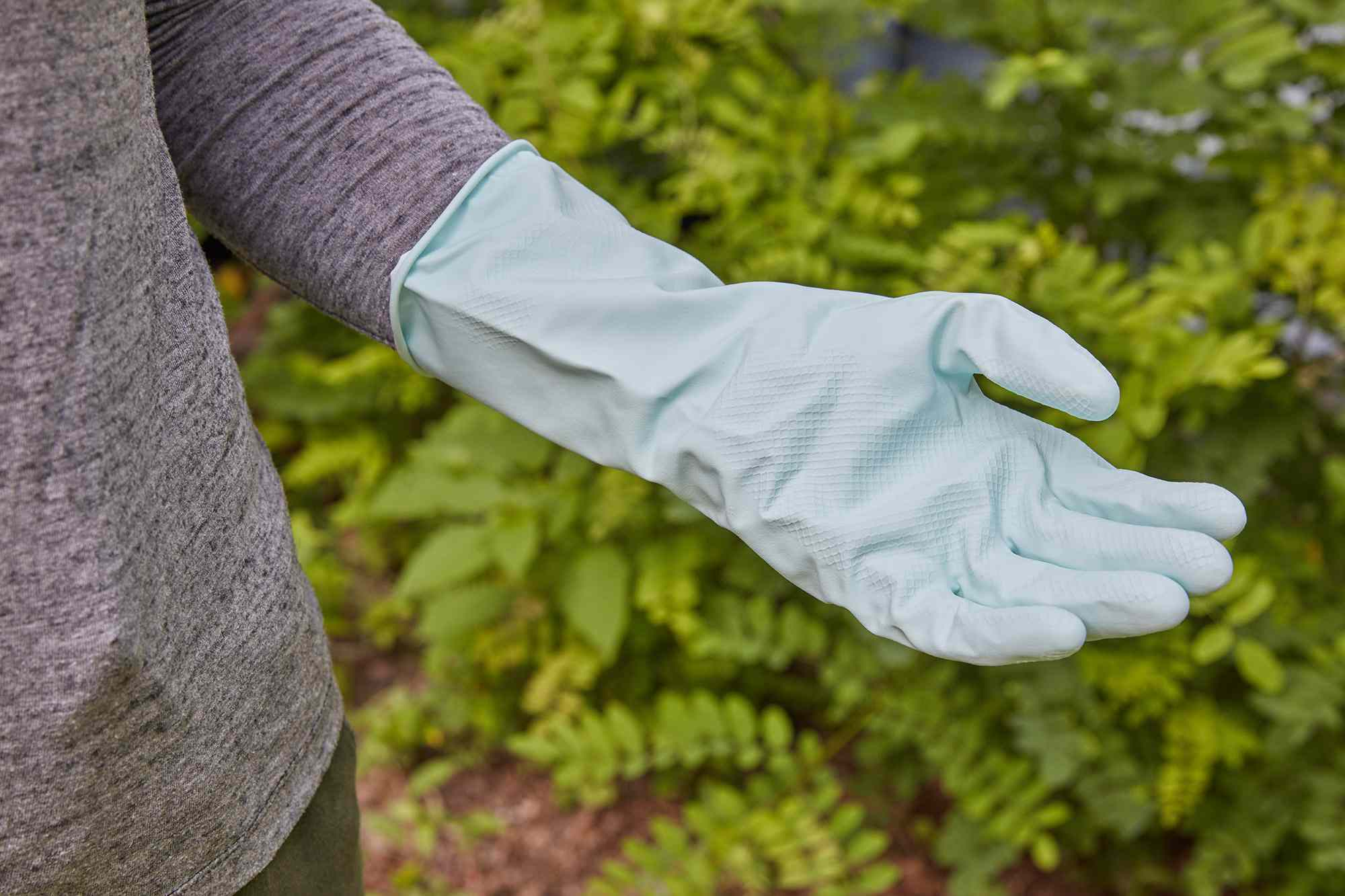 Light blue rubber gloves worn to remove poison ivy