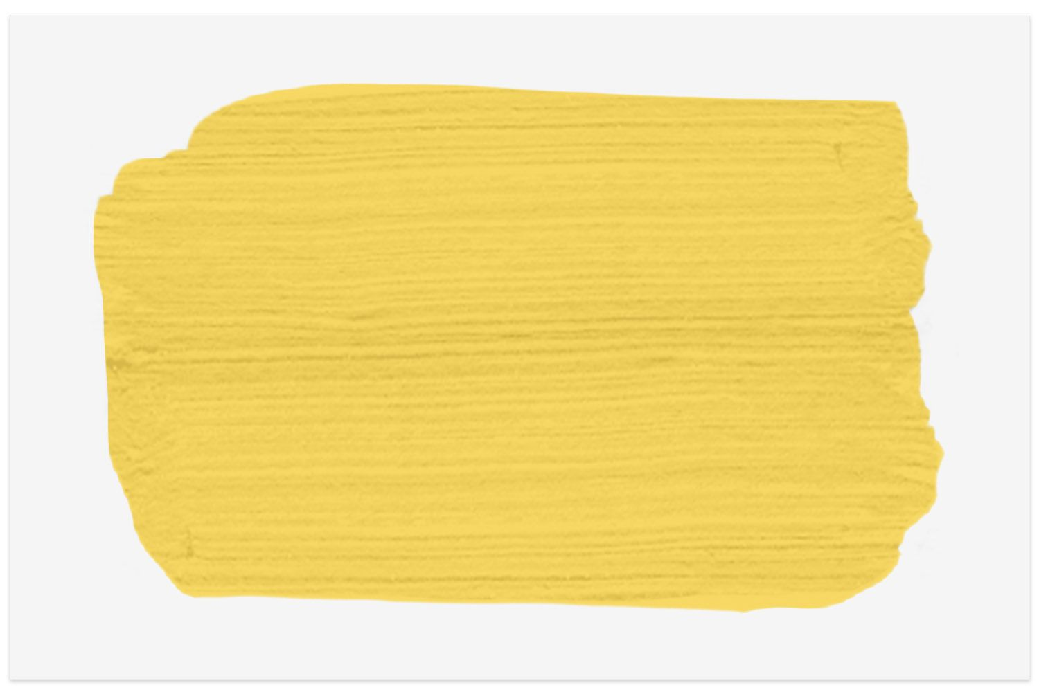 Forsythia Blossom paint swatch from PPG Paints