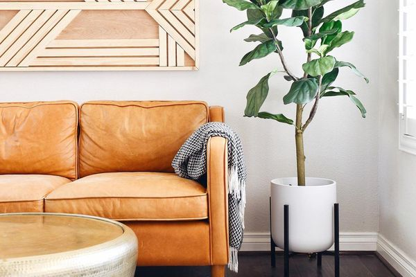 Living room with leather couch