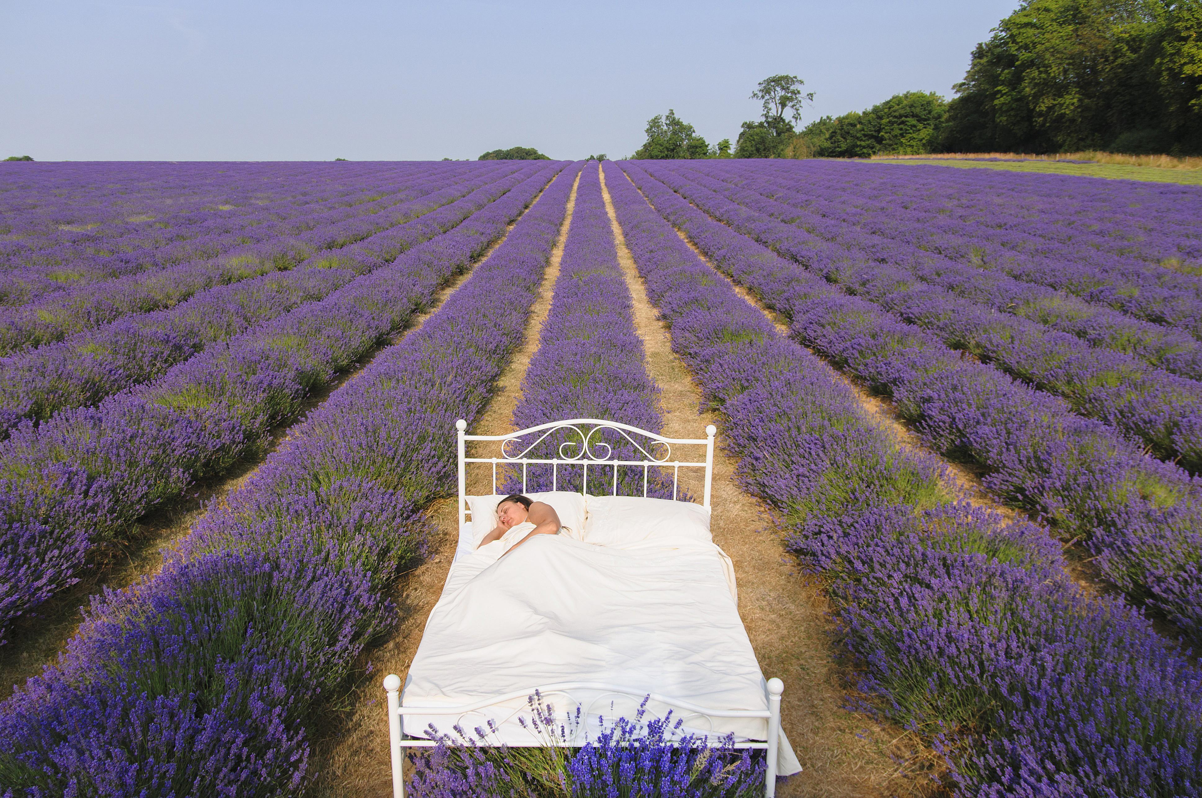 Diy Aromatherapy Sleep Spray