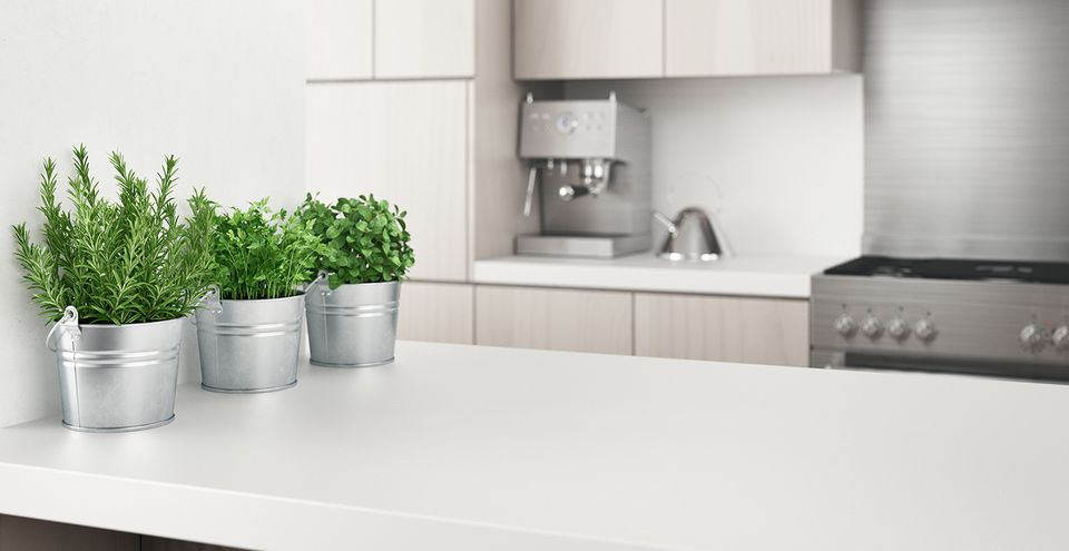 Potted Plants On Kitchen Island At Home