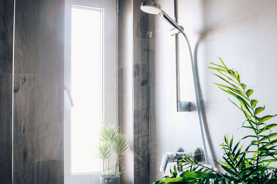 Glass shower door with houseplants in front of brightly-lit thin and vertical window