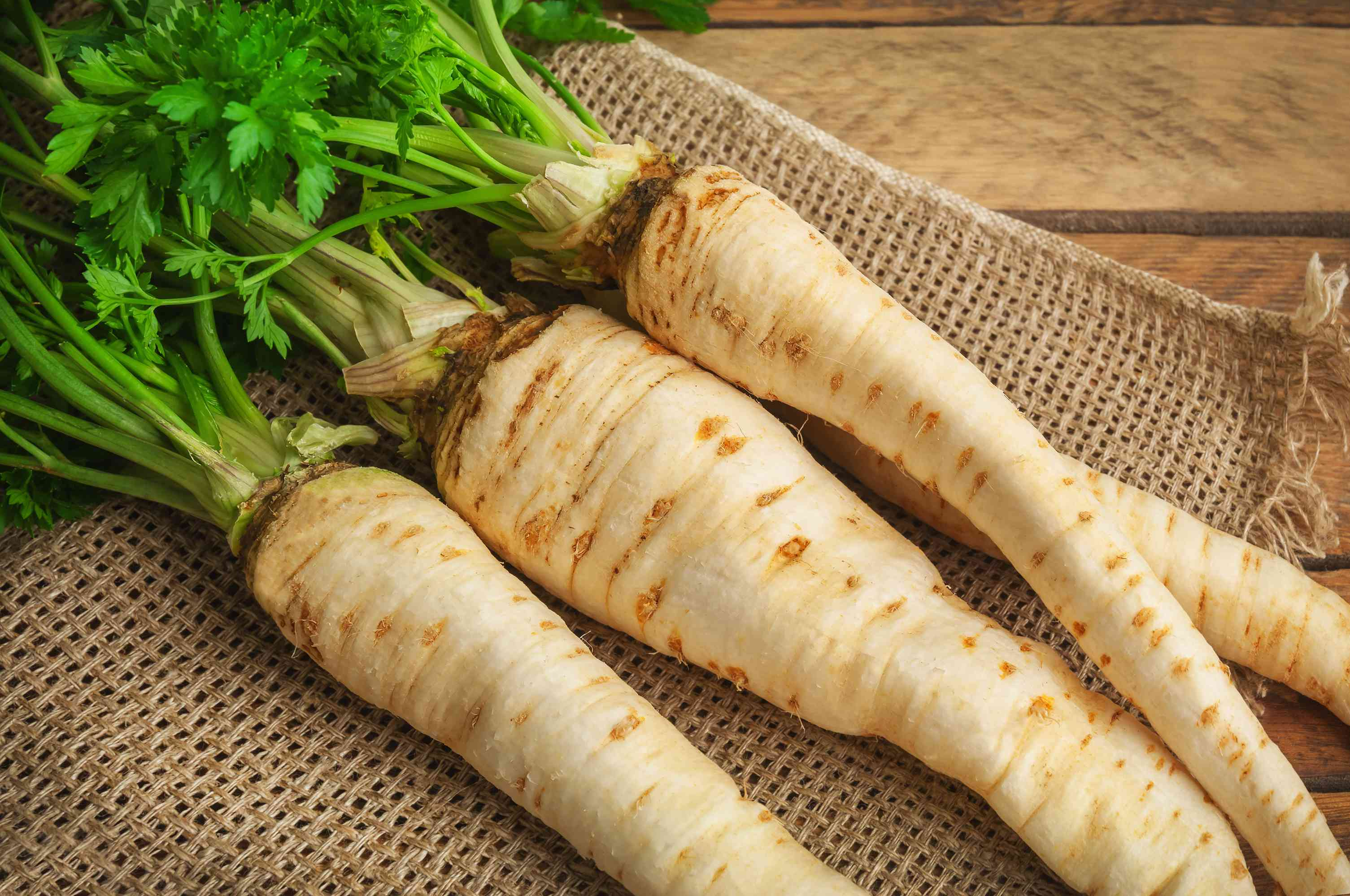 parsnips on a cloth